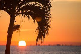 Tropical Sunrise Duft