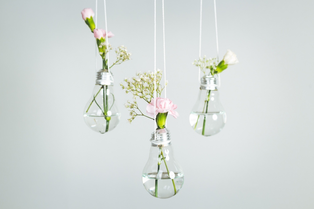 Blumen und Blüten in Glühbirne als Vase aufgehängt für Deko